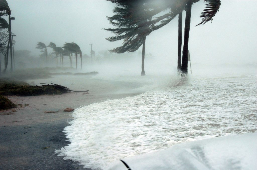 Quick & Easy Steps to Hurricane Proof Your House